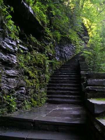Watkins Staircase